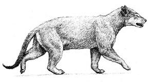 Ump, Dog of the Pleistocene