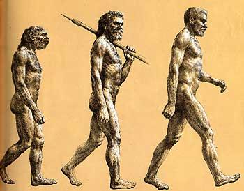 Understanding Early Man