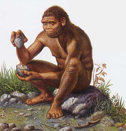 Homo Habilis Tools http://delamagente.wordpress.com/2012/01/30/lucy-a-biography-part-iva/hh-2/
